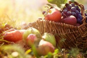 fruits dans la corbeille