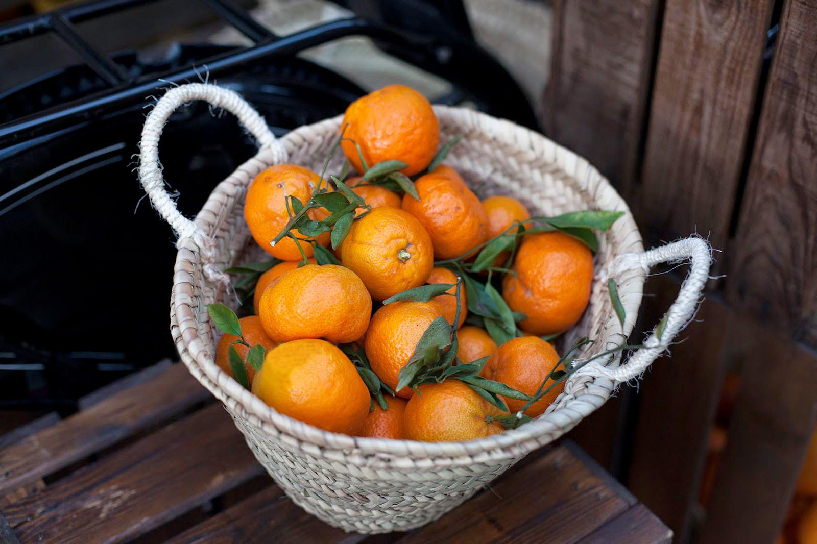 mandarines en saison en février